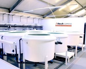AquaBioTech Group Completes RAS Research Facility For Alltech Coppens In The Netherlands