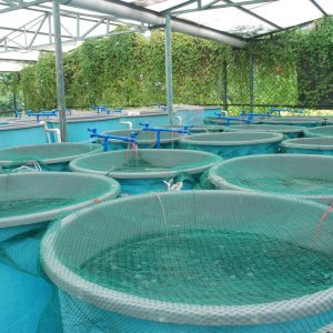 Precision Farming Technology For Aquaculture Project Funding Announced