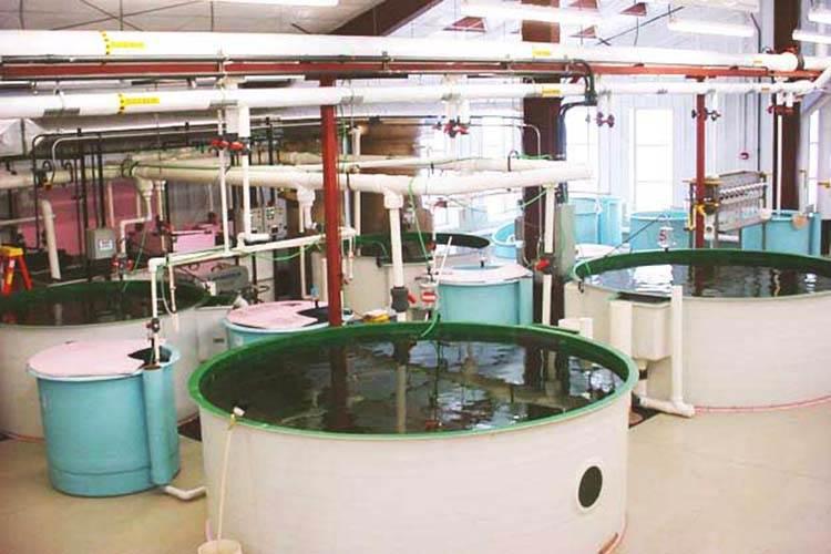 Uwsps Northern Aquaculture 78591