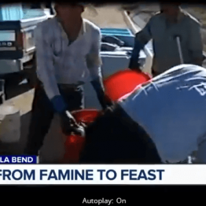 A Desert Shrimp Farm That Fell On Hard Times Is Back In Business