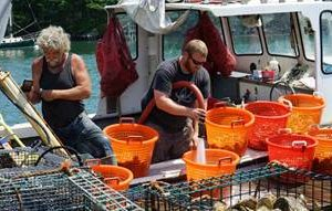 NOAA Awards $9.3 Mln For Aquaculture Research