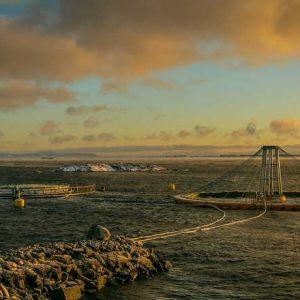 Canada's Aquaculture Technology Innovator