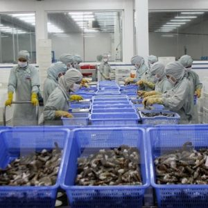 VASEP Forecast Upbeat Shrimp Export Growth For 2018