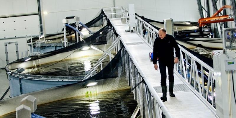 Grieg Aquaculture
