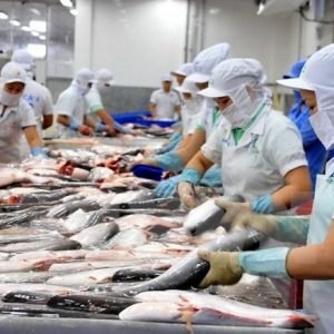 Long An Vietnam To Increase Aquaculture Area In 2018