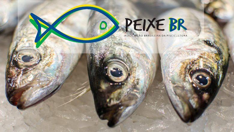 Peixe Fresco Michele Ursino