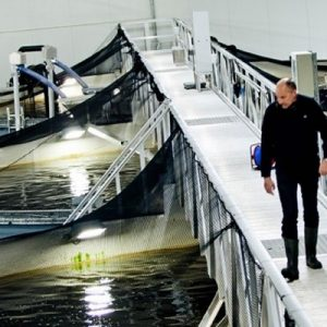 Group Encourages Province To Adopt Norway Aquaculture Regulations