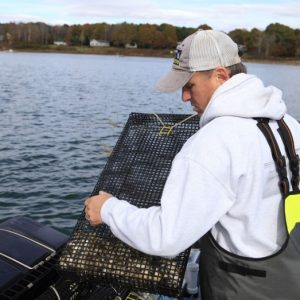 Island Institute Readies For Third Year Of Aquaculture Business Program