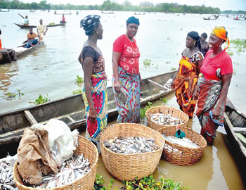 Fish Production Farming