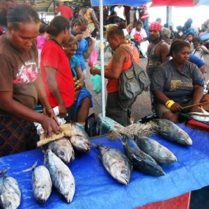 Solomon Islands Welcomes NZ's Help With Aquaculture