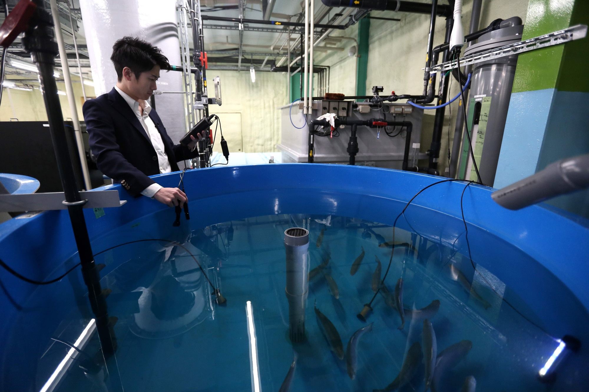 "In This Picture Taken On January 30, 2018, Chief Operating Officer Of FRD Japan, Tetsuro Sogo Measures The Dissolved Oxygen In A Tank Of Grey Salmon At The Company's Test Facility In Saitama. Japan May Be An Island Nation Surrounded By The Bounty Of The Sea, But Businessman Tetsuro Sogo Is Looking Inland To Raise One Of The Country's Most Loved Sushi Fish: Salmon. / AFP PHOTO / Farzaneh KHADEMIAN / TO GO WITH AFP STORY ""JAPAN-AQUACULTURE-FISHING-SALMON"" FEATURE BY NATSUKO FUKUE"