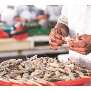 Thailand To Decide On Whether To Allow Resuming Of Shrimp Import From India