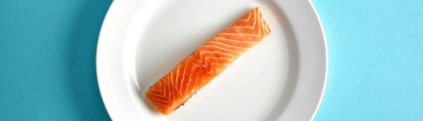 Salmon Plate 1600 1400×400