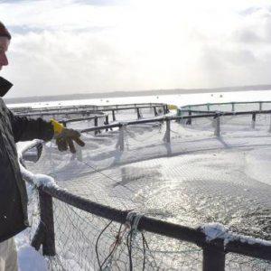 Waycobah Aquaculture Nets $1m ACOA Contribution