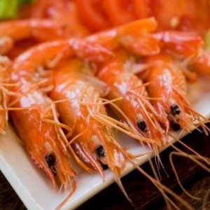 India's Shrimp Production May Increase By 10% In 2018: FAO