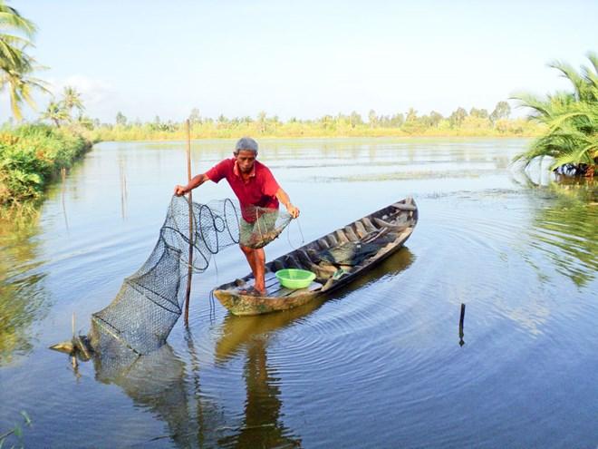 Vna Ecoshrimp Farming In Vietnam