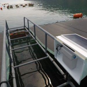 Remote Fish Feeding Management Startup Umitron Raises Additional US$2.7M Funding