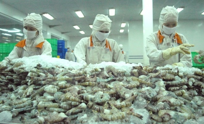 Shrimp Processing Factory