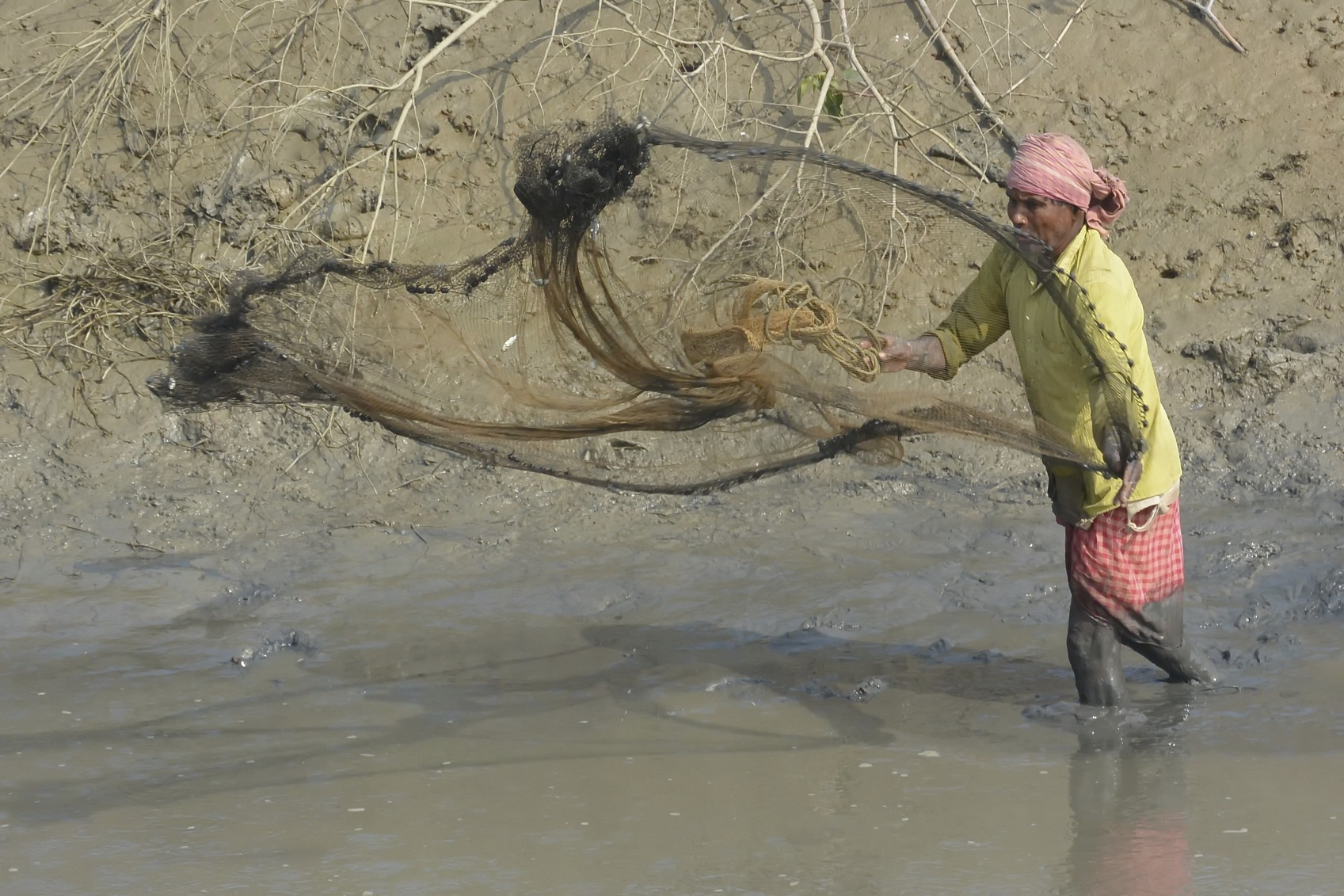 Sunderbans, West Bengal State, India - January 10, 2014: Farmer Casts A Large Round Fishing Net At The Bottom Of A Drought Stricken Farmland Pond.  There Are A Few Tiny Fish Caught In The Netting From The Last Net Casting. The Man Stands In Knee-deep Mud In The Drought Stricken Pond.