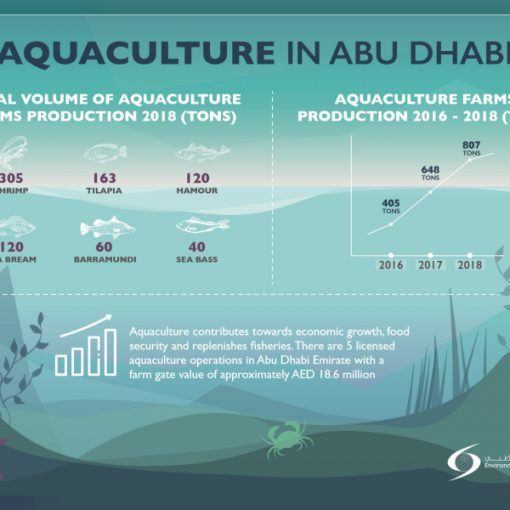 Study backs biofloc benefits in shrimp production – Aquaculture Magazine